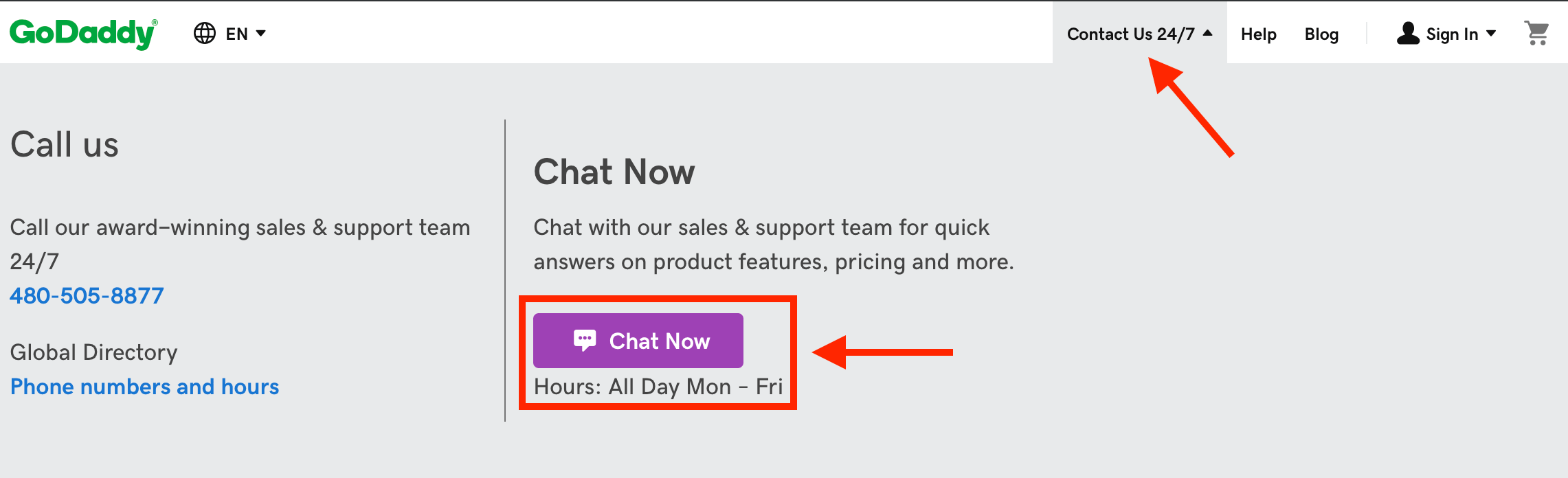 GoDaddy Online Chat
